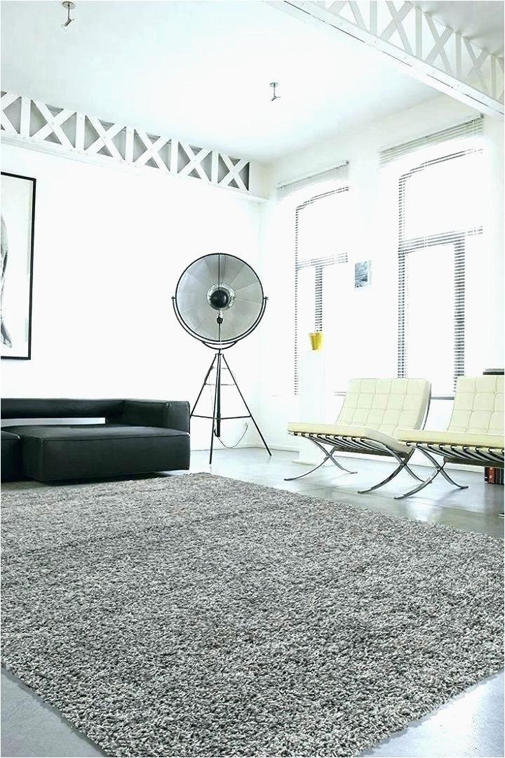 Large area Rugs at Big Lots Bedroom Rugs for Sale area Rug Delightful Living Room