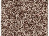 12 Foot Round area Rugs Amazon Shaw Super Shag area Rug Bling Collection Tweed