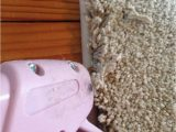 Area Rug Cutting and Binding the Best Alternative to Expensive Carpets Binding A Carpet