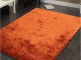 Area Rugs Buy now Pay Later Fuzzy Rust area Rug 5 X 7 1stopbedrooms