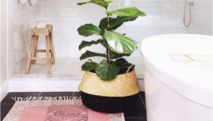 At Home Bathroom Rugs Bathrooms Rugs Home Decor Designs Ideas