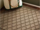 Bed Bath and Beyond Entry Rugs Keep Dirt Water Mud and Muck Outside where they Belong