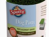 Best area Rugs for Dogs that Pee Spotty Indoor Potty Replacement Pad House Training Pet Puppy Dog Artificial Grass Rug Turf Pee Mat