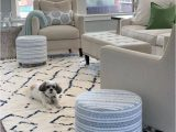 Best Pet Friendly area Rugs 12 Best Navy and White area Rugs Under $200