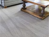 Best Pet Friendly area Rugs the Best Pet Friendly Carpet is Petproof From the Home Depot