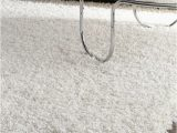 Best Vacuum for High Pile area Rug Best Vacuum for Thick High Pile Shag & Plush Carpet [2020