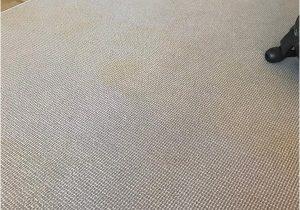 Can You Scotchgard area Rugs Scotchgard Rug & Carpet Protector and Stain Blocker Spray 14 Oz 1 Can