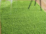 Dark Green area Rug 5×7 Grass Green 5 X 8 solid Shag Rug