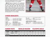 Detroit Red Wings area Rug Detroit Red Wings 21 X 78 Premium Runner Rug area Rugs