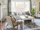 Farmhouse Living Room area Rugs Family Friendly Affordable Designer Rugs