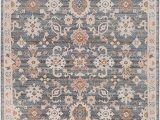 Grey and Peach area Rug Amazon somerdale 6 X 9 Rectangle Updated Traditional