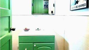 Light Green Bathroom Rugs Sweet Amazing Mint Green Bathroom Rugs In 2020