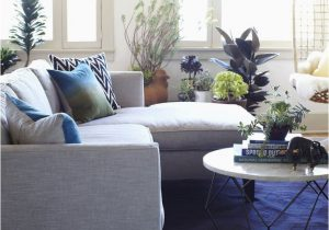 Navy Blue Rugs for Living Room Blue Rug Living Room Ideas Turquoise Rugs for Center Layout