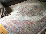 Nicole Miller area Rugs Home Goods Nicole Miller Rug From Homegoods