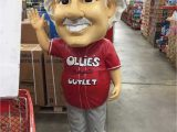 Ollie S Bargain Outlet area Rugs Ollie S Bargain Outlet Oddities 25 Of the Craziest Items at