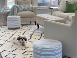 Photos Of area Rugs In Living Rooms 12 Best Navy and White area Rugs Under $200