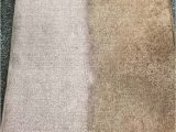 Places to Get area Rugs Cleaned area Rugs Cleaning In Kitchener Waterloo Aaa Steam Carpet
