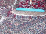 Places to Get area Rugs Cleaned Keep Away From Fake area Rug Cleaning Panies In
