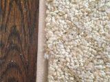 Rug Binding In My area Protected Blog › Log In