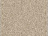 "Solid Color area Rugs 6×9 orian Rugs Next Generation solid Platinum Shag area Rug 7 10"" X 10 10"" Tan"
