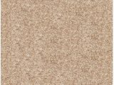 Solid Color area Rugs Lowes area Rugs Details Hgtv Home Flooring by Shaw Kashmir 3ve71