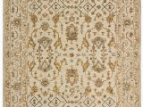 Stone and Beam area Rugs Stone & Beam Lottie Traditional Wool area Rug 4 X 6 Foot Beige
